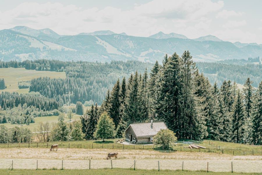 Wanderung Hauchenberg mit Alpkoenigblick im Allgaeu – Aussicht