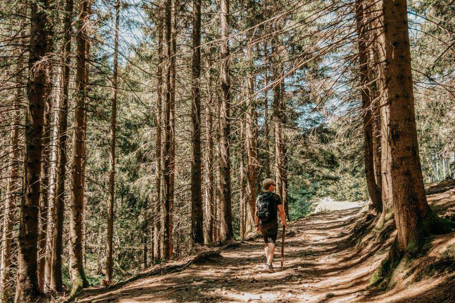 Wanderung Hauchenberg mit Alpkoenigblick im Allgaeu – Christian im Wald