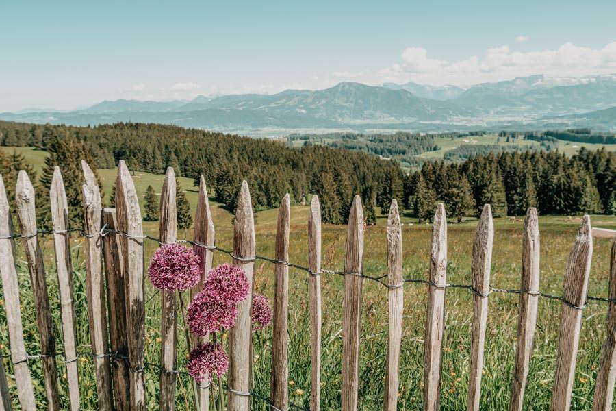 Wanderung Hauchenberg mit Alpkoenigblick im Allgaeu – Zaun