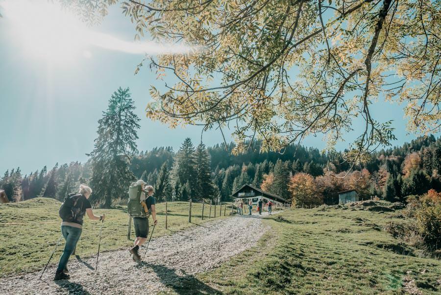 Wanderung Sennalpe Derb bei und Oberberg im Allgaeu – Bergauf