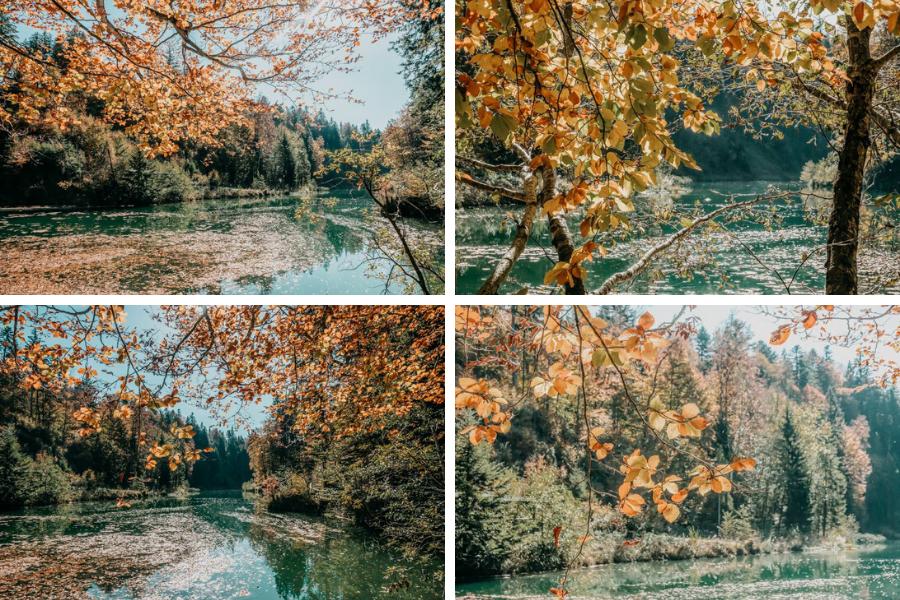 Wanderung Sennalpe Derb bei und Oberberg im Allgaeu – Herbst am Stausee