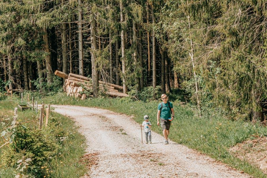 Wanderung beim Glasmacherdorf Schmidsfelden im Allgaeu – Rueckweg