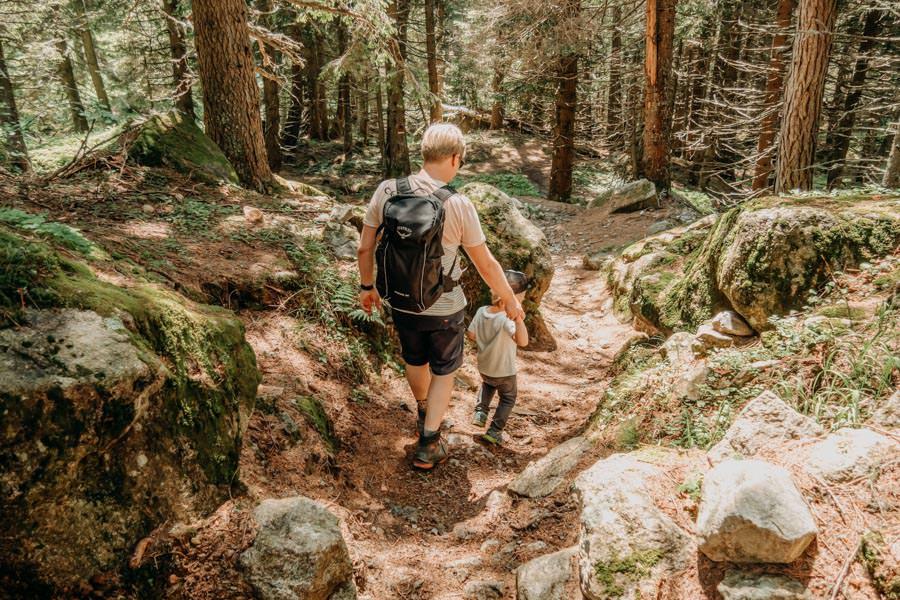 Wanderung zur Ifinger Huette in Suedtirol – Abstieg
