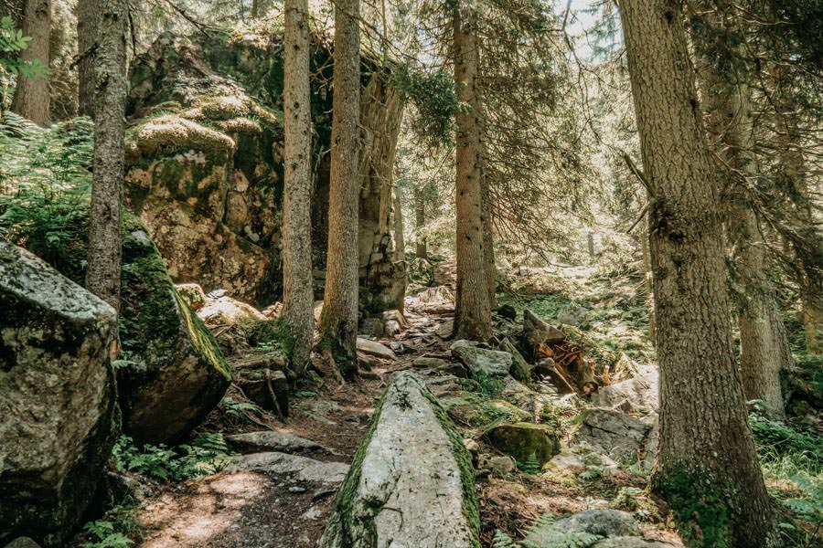 Wanderung zur Ifinger Huette in Suedtirol – Felsen
