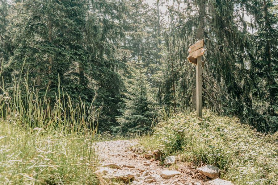 Wanderung zur Ifinger Huette in Suedtirol – Wanderwegweiser