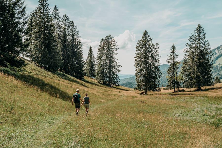 Lecknertal Wandern - Lecknertal Wanderung - Bregenzer Wald 17