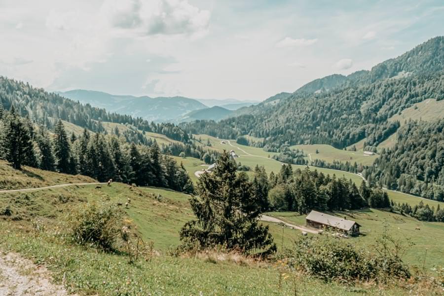 Lecknertal Wandern - Lecknertal Wanderung - Bregenzer Wald 19