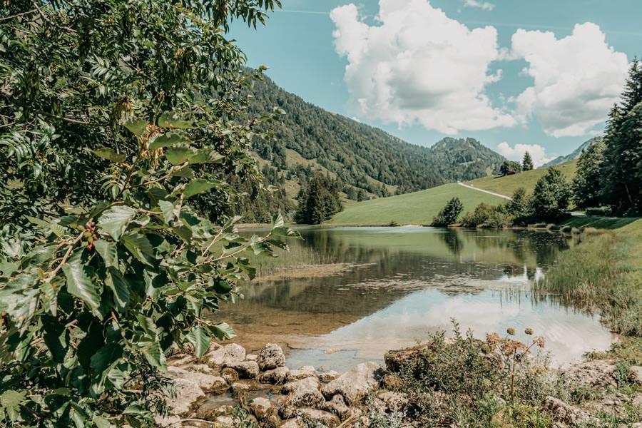 Lecknertal Wandern - Lecknertal Wanderung - Bregenzer Wald 5