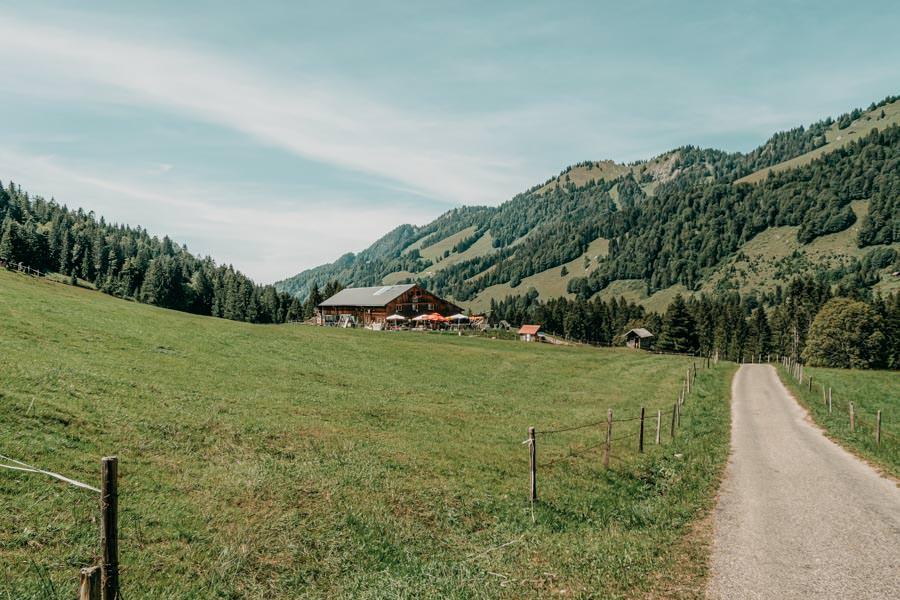 Lecknertal Wandern - Lecknertal Wanderung - Bregenzer Wald 8
