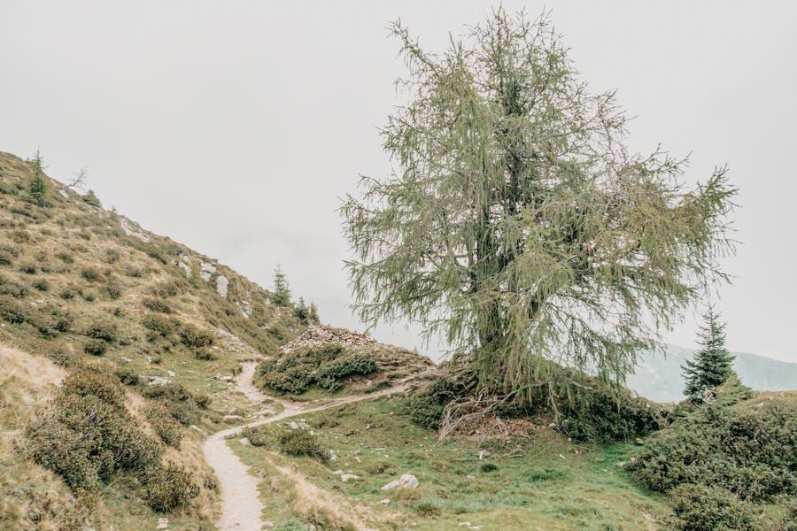 Wandern von Huette zu Huette am Hirzer in Suedtirol 13