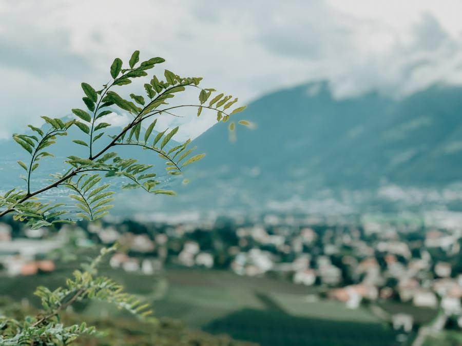 Schenna Wandern – Mitterplattweg - Maiser Waalweg 4