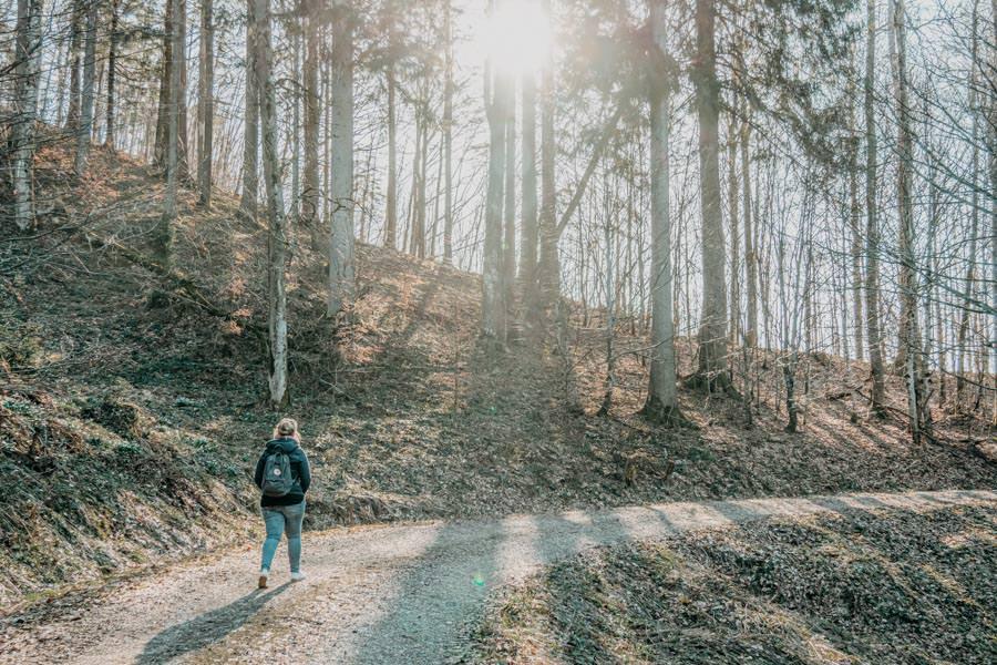 Isny Wandern – Rohrdorder Tobel Allgaeu 24