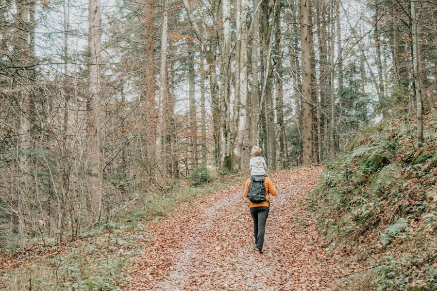 Wanderung zur Kreuzleshoehe im Kreuzthal im Westallgaeu 12