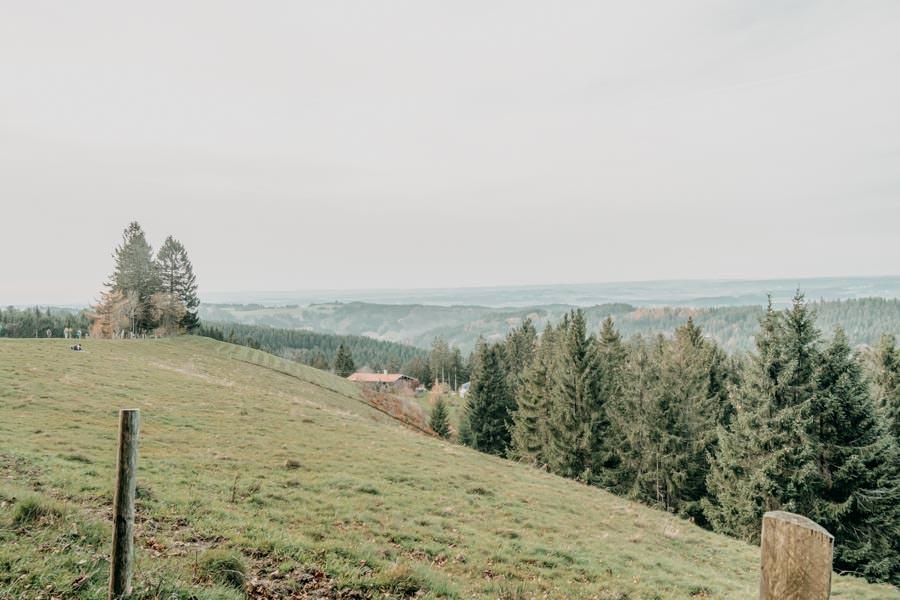 Wanderung zur Kreuzleshoehe im Kreuzthal im Westallgaeu 14