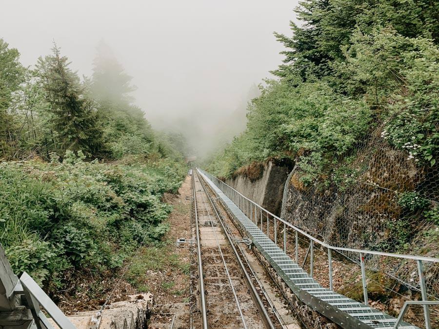 Mendelbahn Mendelpass - Wanderung zur Halbweghuette bei Kaltern in Suedtirol 18